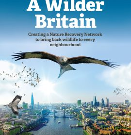 New Proposals for a Wilder Britain